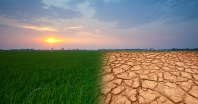 climatechange-800x445