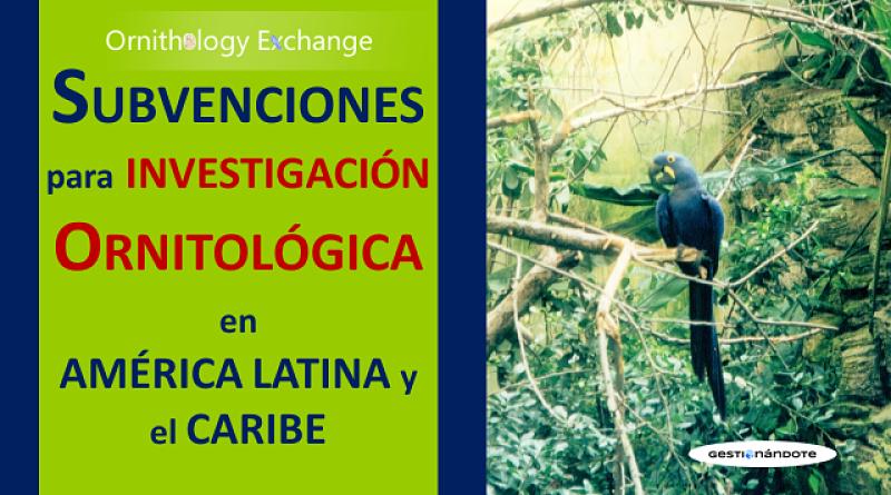 Subvenciones para investigación en ornitología y conservación ambiental