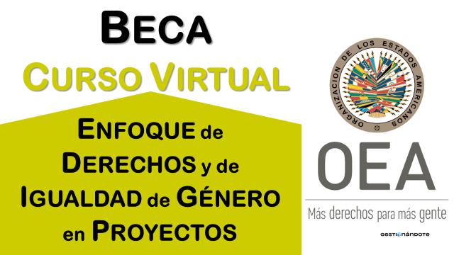 Beca para curso de la OEA sobre enfoque de derechos y de igualdad de género