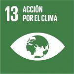 13-accion-por-el-clima
