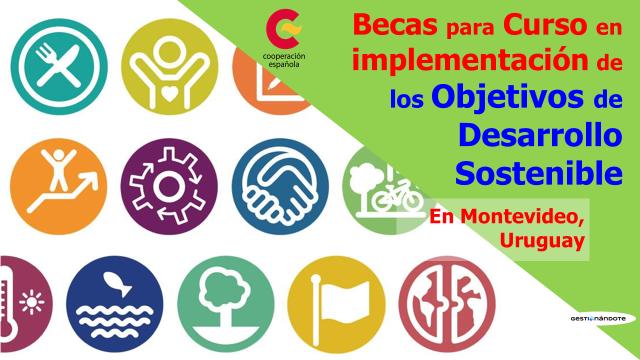 Curso sobre implementación de los Objetivos de Desarrollo Sostenible – ODS – Becas de AECID