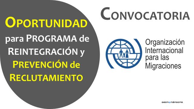 Convocatoria para contratar profesional para programa de reintegración – OIM