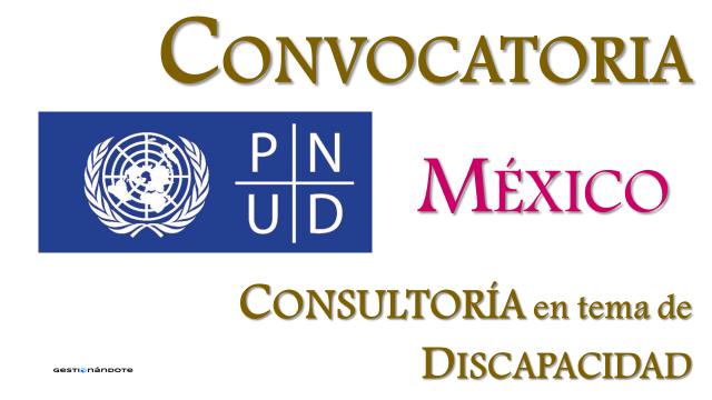 PNUD contrata equipo consultor para talleres para la inclusión de niños y niñas con discapacidad – México