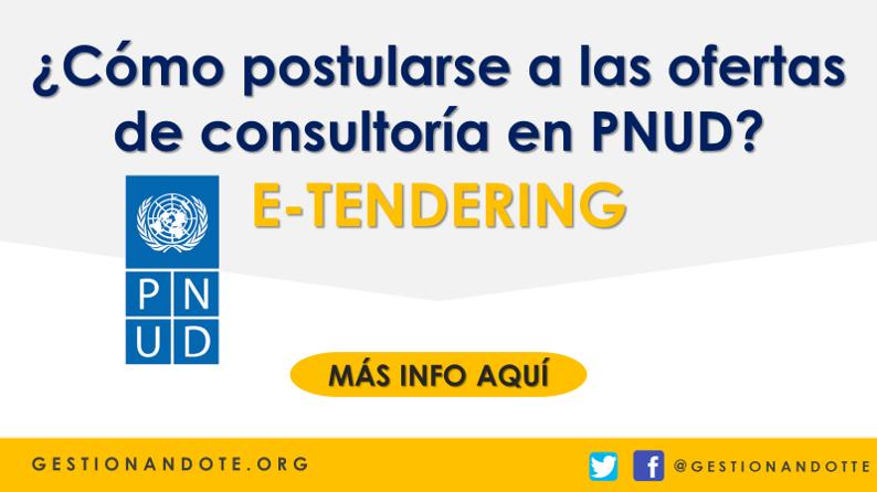 E-Tendering: ¿Cómo acceder a las ofertas de consultoría en PNUD?