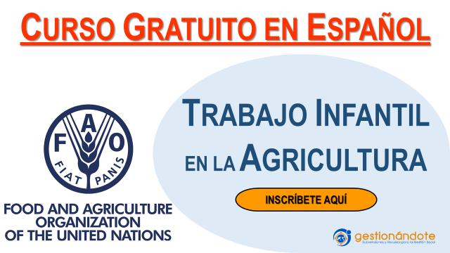 Curso de la FAO sobre trabajo infantil en la agricultura