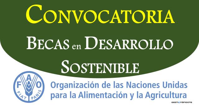 Becas de la FAO para adelantar estudios y prácticas en desarrollo sostenible