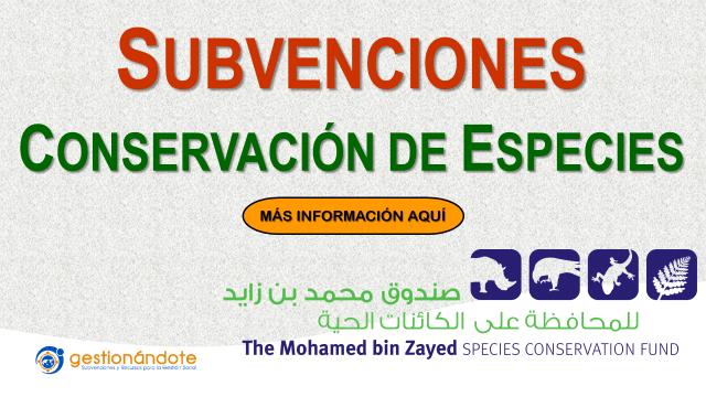 Nueva Convocatoria del Fondo Bin Fayed para la conservación