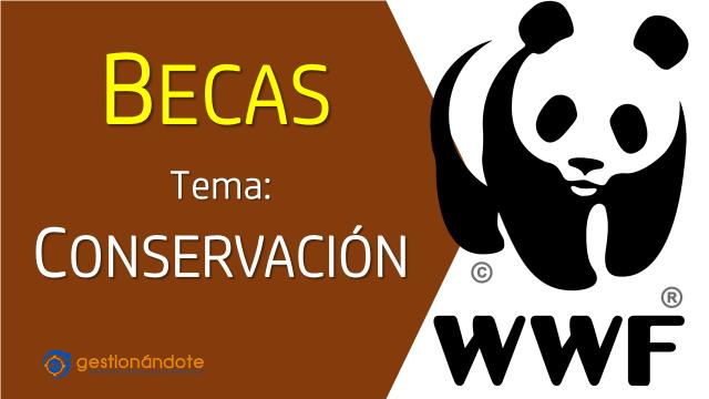 Becas WWF en temas de conservación de la naturaleza