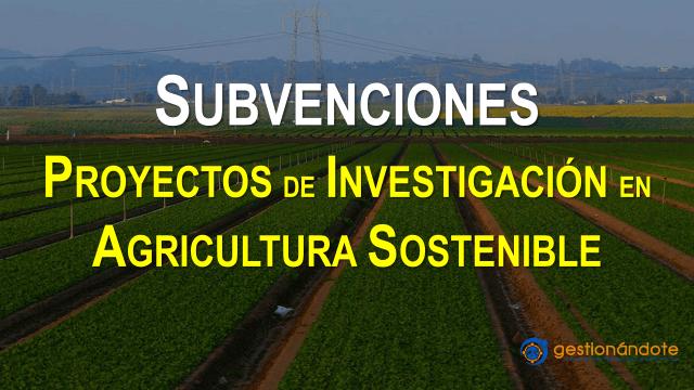 Subvenciones para proyectos en biociencia y agricultura sostenible – Rothamsted