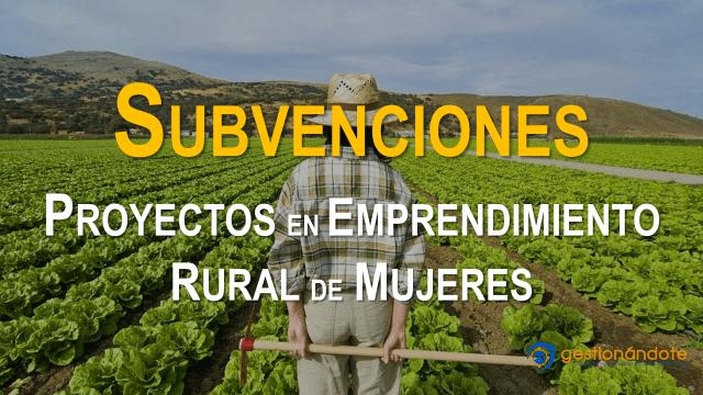 Subvenciones para proyectos de investigación en emprendimiento rural de mujeres