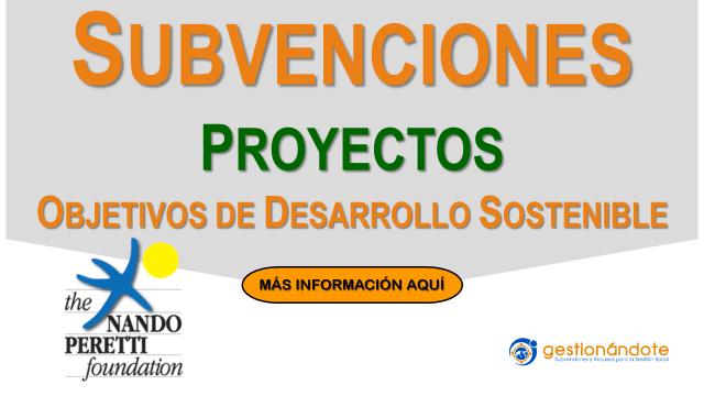 Subvenciones de Nando Peretti para proyectos en línea con los ODS
