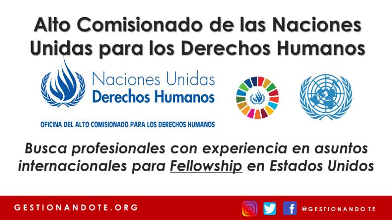 Fellowship en Derechos Humanos – Naciones Unidas ACNUDH