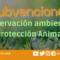 Subvenciones PBNF para conservación y protección animal