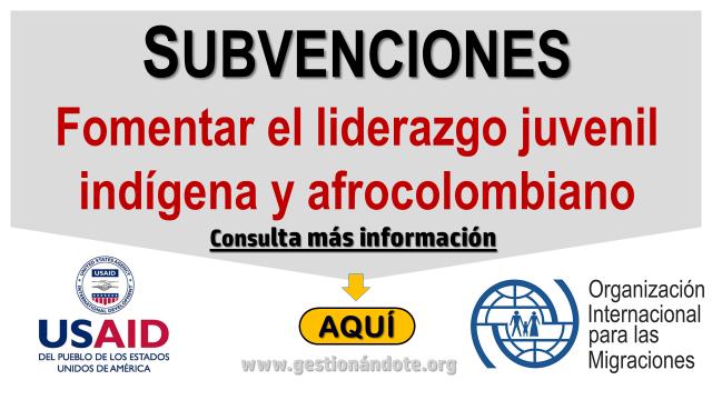 Financiación de actividades para fomentar el liderazgo juvenil indígena y afrocolombiano – OIM