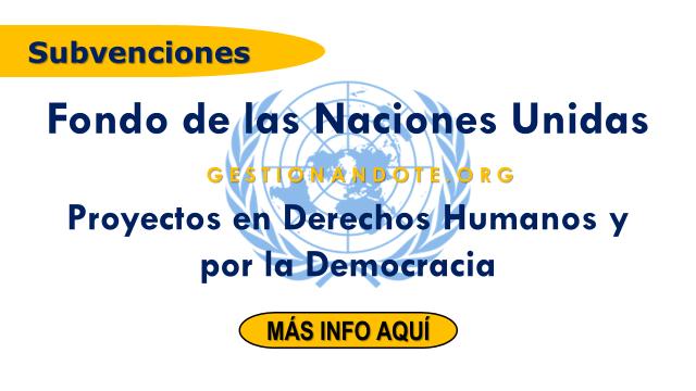 Fondo de las Naciones Unidas financia proyectos para la democracia y DD.HH.