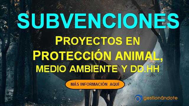 Subvenciones para proyectos de protección animal, medio ambiente y derechos humanos