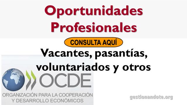 Encuentra oportunidades profesionales en la OCDE
