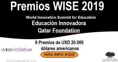 premios wise 2019