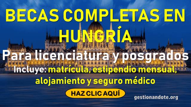 Becas completas en Hungría para estudios de educación superior