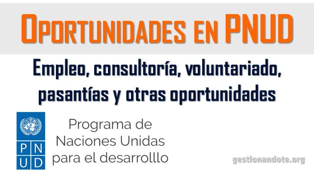 Oportunidades laborales en PNUD