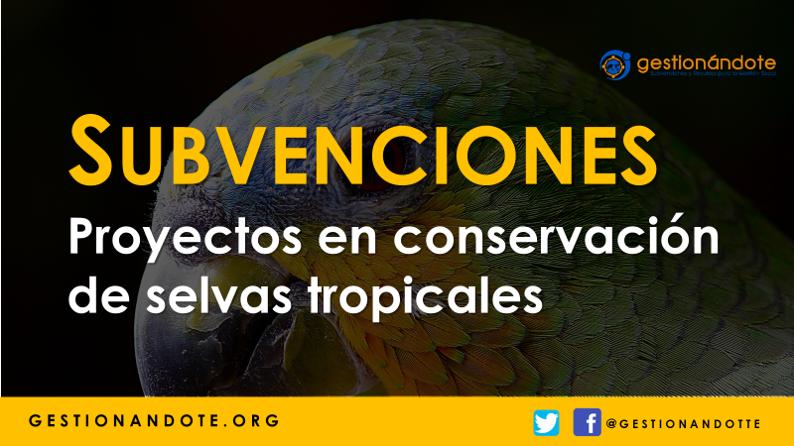 Waterloo financia proyectos de conservación de selvas tropicales