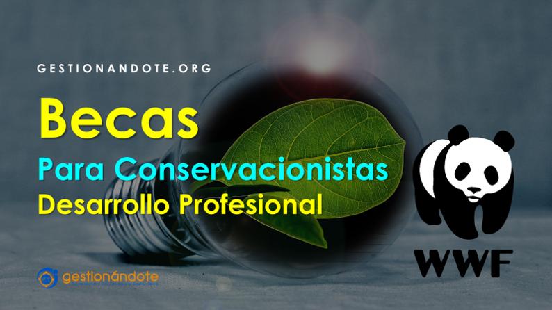 Becas de WWF para desarrollo profesional de conservacionistas