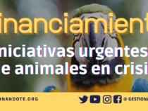 Programa de Subvenciones para Animales en Crisis