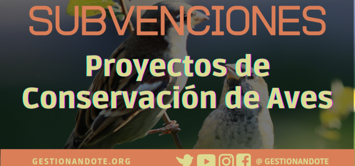 Subvenciones para proyectos de conservación de aves – NBC