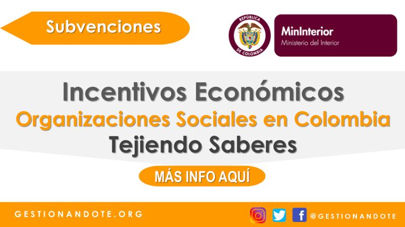 Tejiendo Saberes, Incentivos para organizaciones sociales en Colombia