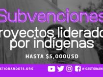 Subvenciones para proyectos comunitarios liderados por indígenas