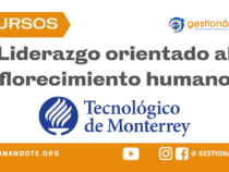 Curso en español en Liderazgo orientado al florecimiento humano