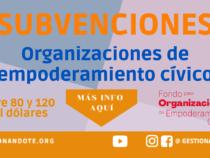 Fondos para organizaciones de empoderamiento cívico – Pulsante