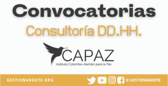 Convocatorias del Instituto CAPAZ para Consultores